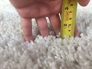 Beautiful fluffy rug... new and never used