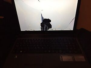 "Broken screen ""worked fine"""