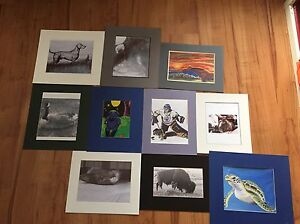 Artist Prints matted and ready for frames