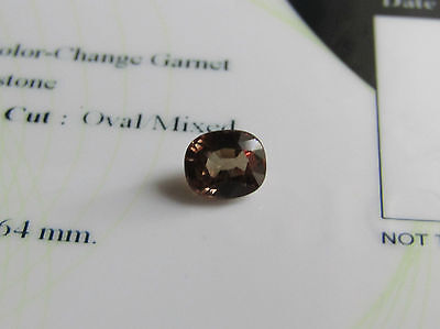 Rare 1.11ct Certified Premium Quality Colour Change Garnet.