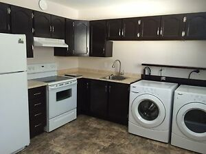 Spacious 1 bedroom apartment, avail Jan 1st