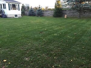 Lawn care in Kawartha lakes home and cottage