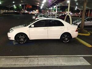 2003 Toyota Corolla Conquest Durack Brisbane South West Preview