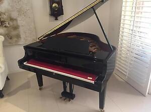 Pool Table Removal Piano Removal Pool Table Removalist Billiard Bundall Gold Coast City Preview
