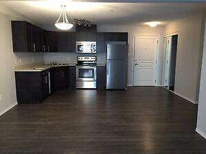 Steps from clareview LRT stn 2 bdrm brand new condo