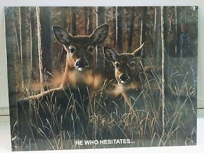 Deer in Forest - He Who Hesitates - Vintage Metal Sign ONLY ONE!!