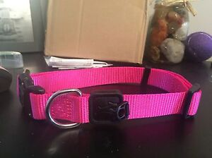 Large dog collars and large dog harness