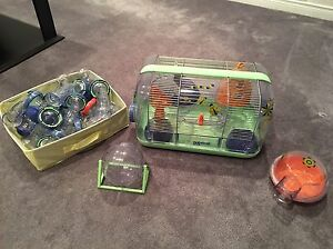 Russian Hamster Cage and Accessories