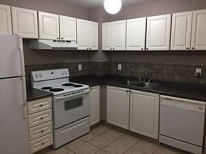 Almost new stove range oven  Edmonton Edmonton Area image 2