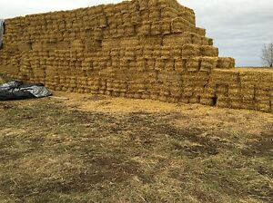 Square Straw Bales