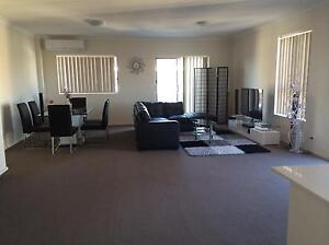 Extra Large bedroom+walk-in wardrobe+ Full bathroom for rent $350 Liverpool Liverpool Area Preview