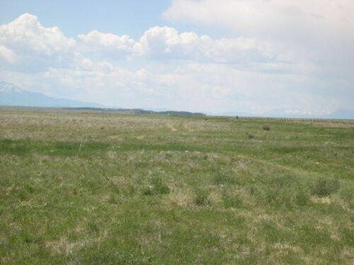 36.1 AC Colorado Ranch for Sale