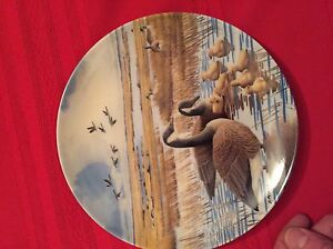 Collector Plates - Wings on the Wind