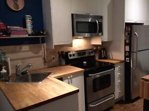 Summer sublet - 1 bdrm in Little Italy