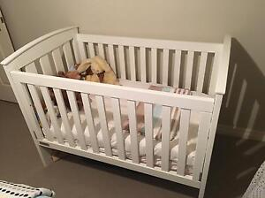 Tasman white cot great condition Beaumaris Bayside Area Preview