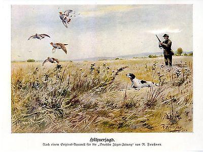 R. Feußner Hühnerjagd Jäger abgelegterJagdhund Historische Jagdliche Grafik 1912