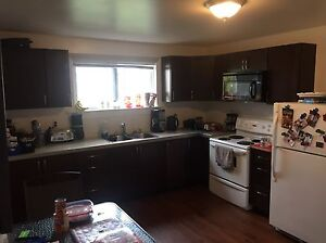 Renovated 2 Bed 1 Bath Basement Apartment Available Jan 1st