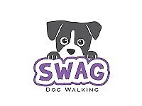 SWAG!-Experienced and Loving Dog-walker, South Belfast Area, Very reasonable Rates