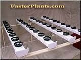 20 Site Hydroponics Grow System NFT/EBB & Flow NEW PAID $1000
