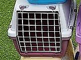 RED/GREY PET CARRIER FOR SALE FOR CATS CHARITY