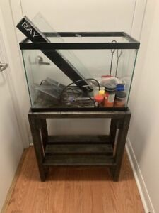 20 gallon fish tank full set up