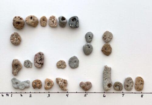 "25 Natural Holey Beach Rocks .5-.75""Hag Stones Fairy Lucky Wish Amulet Magic #A4"