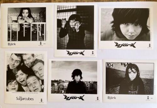BJORK Lot of 6 Elektra 8x10 Promo Photos from the 90s MINT Sugarcubes