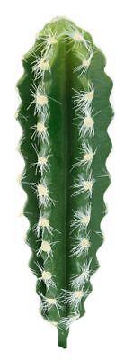 cactus garden for sale  Shipping to Canada
