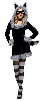 Raccoon Costume For Women (Women's Sexy Fantasy Deluxe Racy Raccoon Adult Costume S/M)