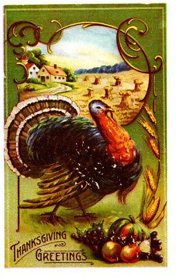 Thanksgiving Greetings, Turkey, Ctry Scene Reprod. Postcard (Thanksgiving Scenes)