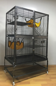 Ferret kingdom cage Wanted Stratton Swan Area Preview