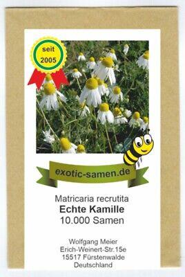 Kamille, echte - Matricaria recrutita - 10000 Samen