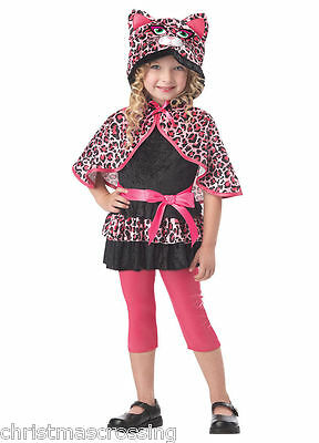 CUTESY KITTY CAT LEOPARD CHILD HALLOWEEN COSTUME GIRLS TODDLER SIZE LARGE 00133