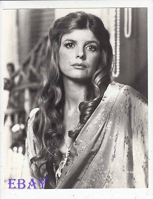 Katharine Ross Sultry  Stare Vintage Photo