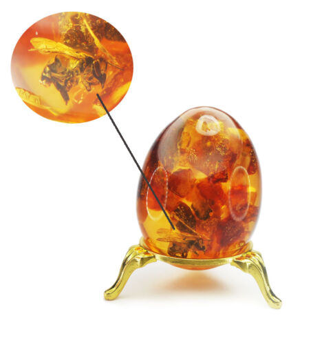 EGG Baltic Amber with Fossil Insect Bee