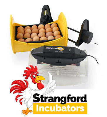 BRINSEA Octagon 20 ECO Incubator (WITH CRADLE) (FULLY AUTOMATIC) (Poultry, Eggs)