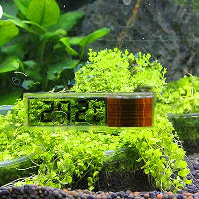 New Lcd 3D Digital Electronic Measurement Fish Tank Aquarium Thermometer Random