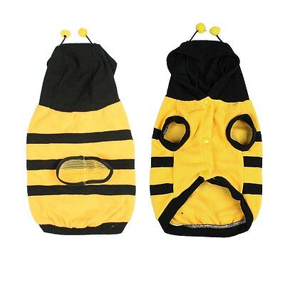 Dress up Costume Bumblebee Bee Doogie Dog Coat Clothes Pet Apparel M I5U2 ()