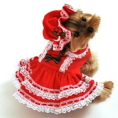Anit Accessories Miss Santa Baby Dog Costume ~ Size L - Baby Dog Costumes