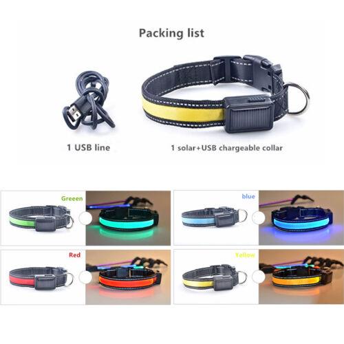 Adjustable Solar Power Rechargeable LED Light Flashing Pet C