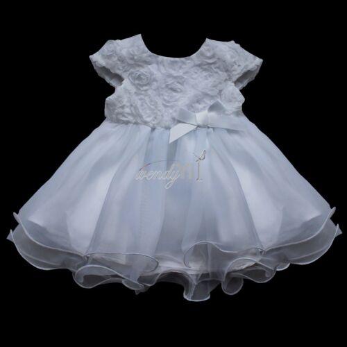 Blue and White Victorian Rose /& Lace Tutu Dress
