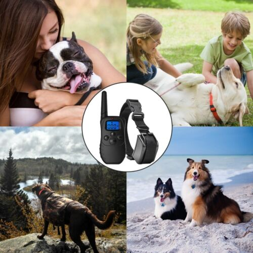 Купить eXuby® EXB-DCH - Dog Shock Collar with Remote + Dual Charger – 3 Mode (sound, vibration & shock)