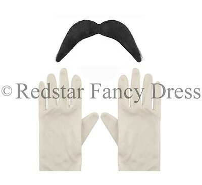 Schnurrbart Handschuhe (Erwachsene weiße Handschuhe & schwarz Schnurrbart Super Mario Luigi)