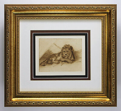 """Striking 1800s REMBRANDT Antique Print """"Incredible Study of a Lion"""" Framed COA"""