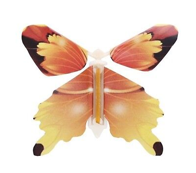 New Flying butterfly card insert (Assorted)