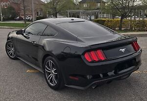 FORD MUSTANG LEASE TAKEOVER