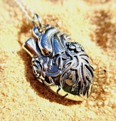Anatomical Real Heart Necklace Charm   925 Sterling Plated   Doctor Nurse Gift