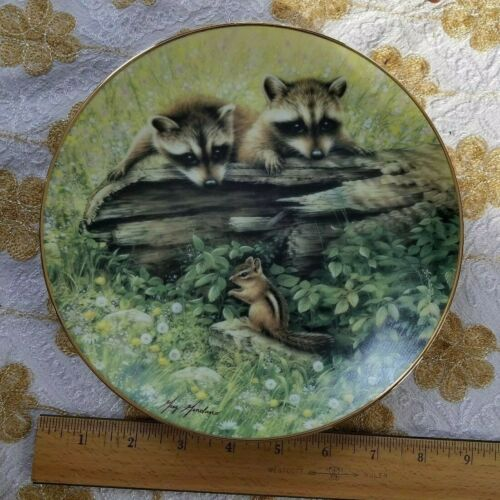 Raccoon Chipmunk Want To Play Woodland Encounters Plate Hamilton Collection