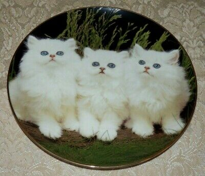 Furry Friends PURR-FECT PAWS Plate #5 Cat Kitten Kitty Jurgen Scholz Faithful