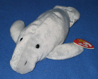 TY MANNY the MANATEE BEANIE BABY- MINT with NEAR MINT TAG